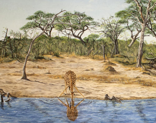 Giraffe392