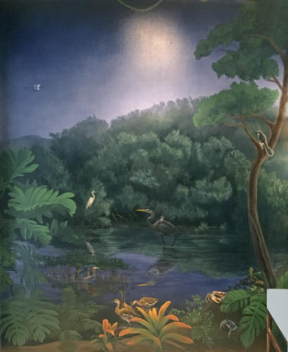 Mangrove wall